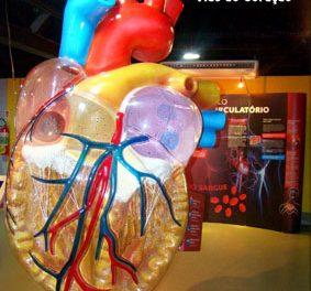 Aberta a agenda/2014 do Museu Ciência e Vida