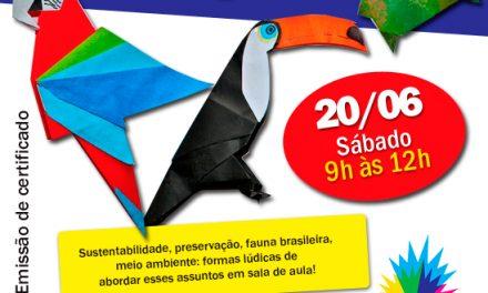 Oficina para Professores :: Fauna Brasileira em Origami