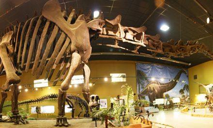Museu recebe exposição que mistura dinossauro e robótica
