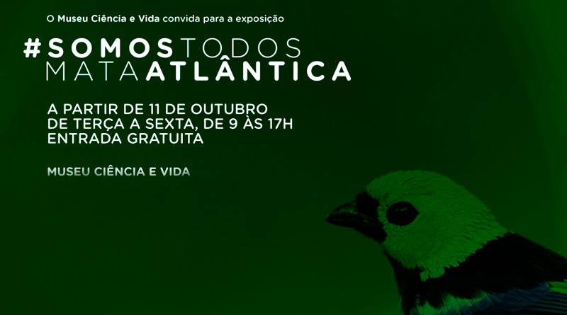 Museu Ciência e Vida inaugura exposição sobre Mata Atlântica